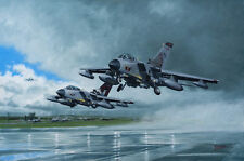 Panavia Tornado 617 Squadron Aircraft Aeroplane Painting Aviation Art Print