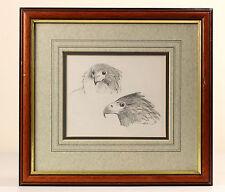 John Cyril Harrison | Fine Original lápiz Sketch | Bateleur estudios de cabeza de águila