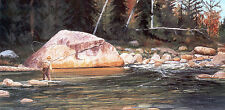 Fly fish painting fishing art Limited Edition Signed Print Nature Wildlife Rock