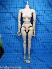 ZCWO 1:6 ZCGirl Muriel ZC64 Spy Nikita Figure - Muscular Body + Palms + Feets