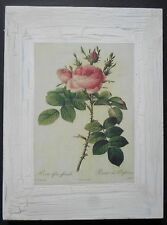 shabby chic plaque florals flowers roses picture print