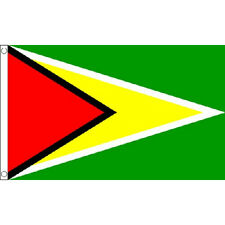 Guyana Flag 5Ft X 3Ft Central America Country Banner With 2 Eyelets New