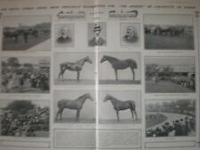 Article Royal Dublin Horse Show 1901 Ireland