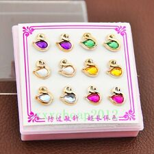 fashion 6 Pairs Mixed Color Lovely swan Earrings ED281