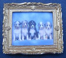 1.12 échelle encadrée image (impression) de cinq chiots poupées maison miniature art