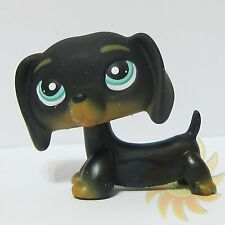Littlest Pet Shop LPS Animal Toy #325 Chien Teckel Puppy Black Dachshund Dog