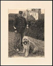 BOUVIER DES FLANDRES DOG AND SOLDIER GREAT DOG PRINT MOUNTED READY TO FRAME