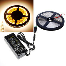 5M 5050 SMD Warm White 300 LED Flexible Strip Light+DC Connector+5A Power Supply