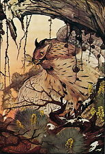 Maurice & Edward Detmold Print Wildlife Bird Owl Perched with Insect Grasshopper