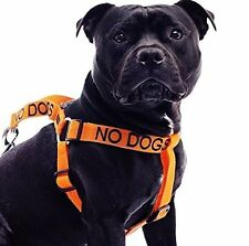 Dog Harness Non Pull Color Coded Warning NO DOGS Not Good With Other Dogs Safe