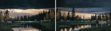 "Rod Frederick "" Before The Storm "" AP #15/50  2 PR Set 1987 ($3000) Value"