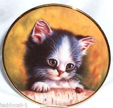 Schirnding katzenporträts 2. Bradex sammelteller = la sorpresa