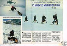 Coupure de presse Clipping 1980 (4 pages) Les Chiens d'avalanche