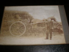 Old cabinet photograph man horse and cart by Shaw at Mullingar c1890s