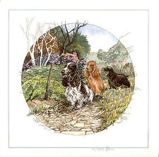 COCKER SPANIEL BLACK GOLDEN BLACK & WHITE DOG FINE ART LIMITED EDITION PRINT