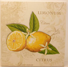 Lemons & Blossom - Shabby Vintage Chic Fruit Kitchen Picture Plaque Home Decor