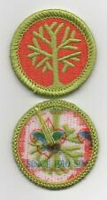 "Genealogy Merit Badge, Type L, ""Since 1910"" Back (2012-Current)"