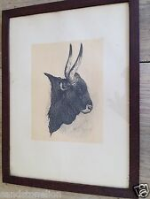 AUTHENTIC ANTIQUE ITALIAN SPAIN WOODCUT BLOCK BULL ART DATED 1850 & SIGNED
