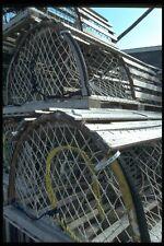 138082 Canada ARAGOSTA trappole A4 FOTO STAMPA