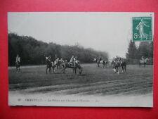 CHANTILLY  :  La Pelouse avec Chevaux à l' Exercice.......VO.1905.