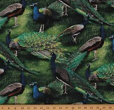 Pagent of Color Peacock Birds Animals Nature Cotton Fabric Print by Yard D479.12