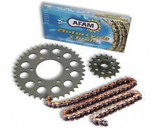 Kit Trasmissione Afam 16-46 passo 530 per YAMAHA FZR 750 R OW-01 88-89
