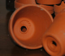 "Lot of 5 sm Terra Cotta pots from Germany 2.5""high CRAFTS GARDEN HERBS WEDDING"