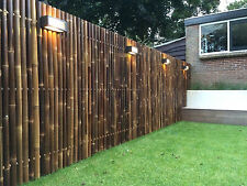 Screen from bamboo garden fence bamboo fence XXL Nigra approx. 180x200 cm