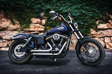 CRUSHER MAVERICK CHROME EXHAUST HARLEY DYNA FXD SUPER GLIDE FXDL LOW RIDER FXDC