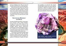 Investigating Minerals, Rocks, and Fossils (Introduction to Earth Scie-ExLibrary