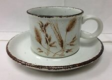 "MIDWINTER ""WILD OATS"" TEACUP & SAUCER STONEHENGE WEDGWOOD MADE IN ENGLAND"