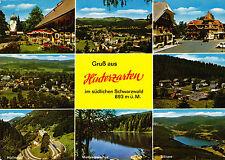 Gruß aus Hinterzarten ,AK 1985 gel.