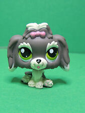 #1523 chien Shih tzu grey Dog special edition LPS Littlest Pet Shop Figure