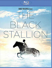 THE BLACK STALLION 1979 Blu-Ray Francis Ford Coppola/Mickey Rooney