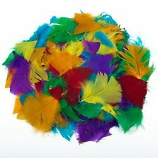 28g Lots Of Coloured Feathers