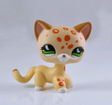 Pet Short Hair Cat Collection Child Girl Boy Littlest Figure Toy Loose LP820