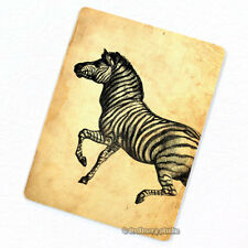 Zebra #2 Deco Magnet, Decorative Fridge Décor Africa Wild Animal Mini Gift