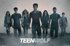 TEEN WOLF - ASH TV POSTER - 22x34 SEXY MTV 13825