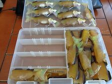 HUGE LOT HARD HEAD SOFT BODY SHAD SWIMBAIT TACKLE BOX Vtg Fishing Lure Crankbait