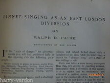 Linnet Bird Song Singing Competition Shoreditch East End London Old Article 1905