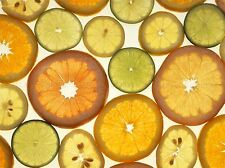 PHOTO CITRUS FRUIT SLICE ORANGE LEMON LIME POSTER ART PRINT BB252A