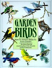 Garden Birds: How To Attract Birds To Your Garden