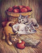 THREE KITTENS AND APPLES 16 X 20 INCH POSTER