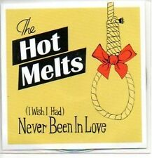 (746J) The Hot Melts, Never Been In Love - DJ CD