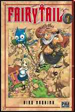 mangas Fairy Tail Tome Double 1 & 2 Mashima Hiro Anime Shonen PIKA One Piece VF