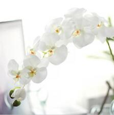 Artificial Silk Flower Big Phalaenopsis Orchid White Cream Home Decor White 96