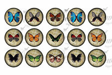 6x4 1 inch round butter fly image prints for pendants bottle caps 2 sheets