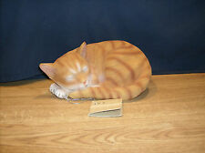 Large Cat Orange - Sweet Dreams -  HD37164   ABC