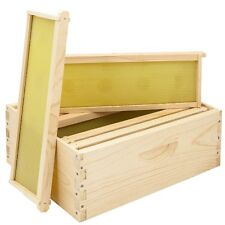 """Monday Special"" 1-10 FRAME MEDIUM,HIVE BODY With Frames And Foundation"