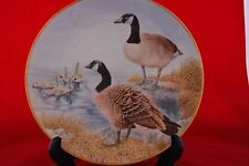 The 12 Waterbird Plates from Danbury Mint  CANADA GOOSE